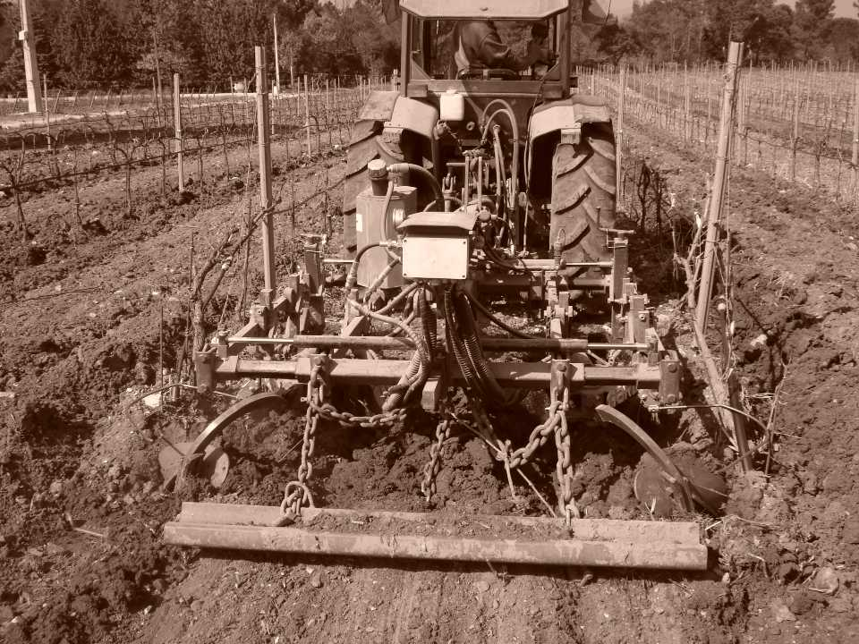 Domaine de la Fouquette - Agriculture Biologique - Var - Côtes de Provence